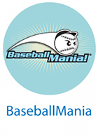 fundraiser-baseball-icon